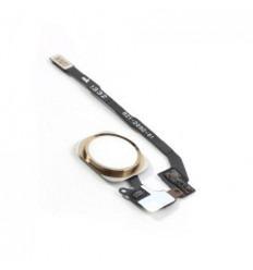 iPhone 5S original gold home button flex cable